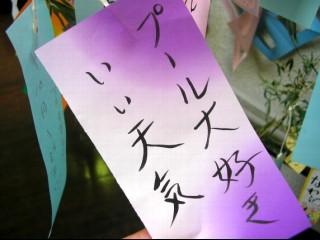 2010_7_04_4