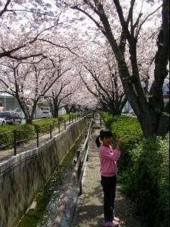 2011_4_10_8